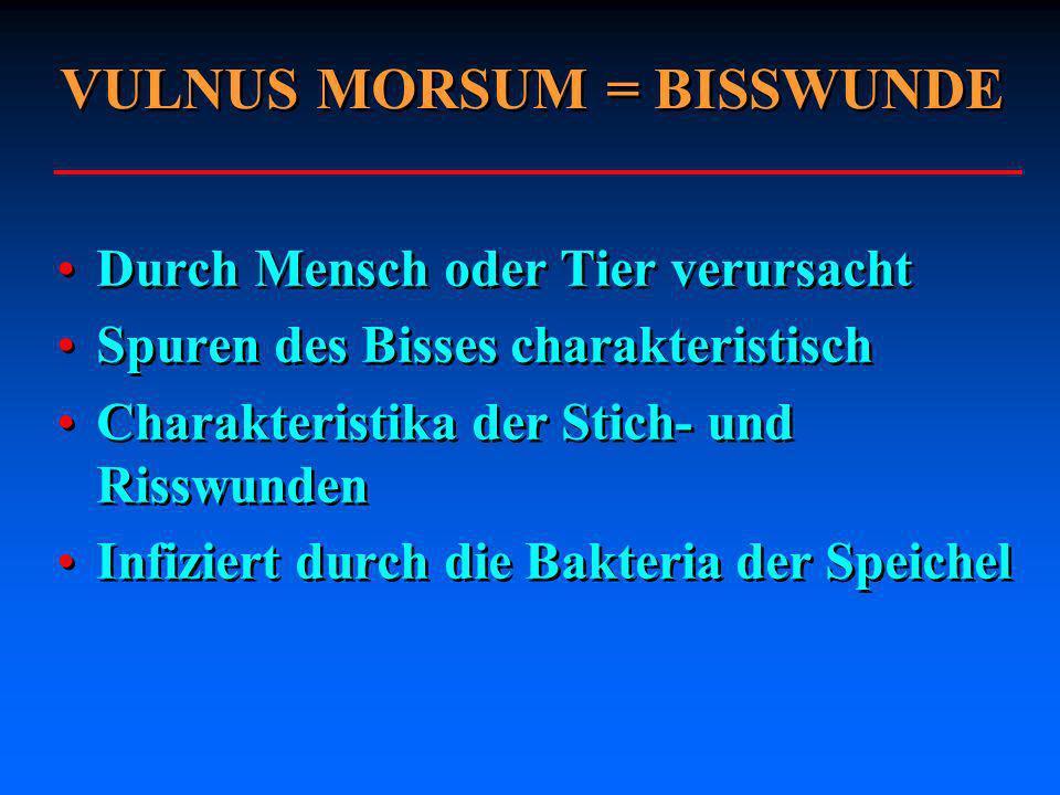 VULNUS MORSUM = BISSWUNDE