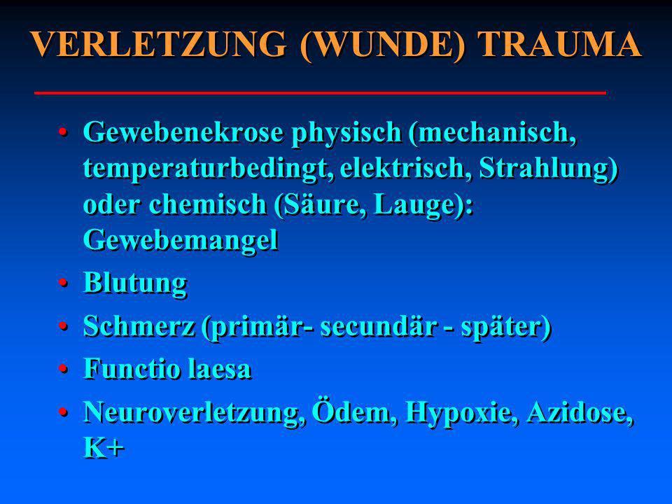 VERLETZUNG (WUNDE) TRAUMA