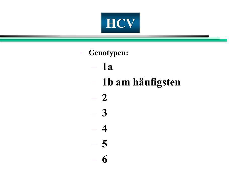 HCV Genotypen: 1a 1b am häufigsten 2 3 4 5 6