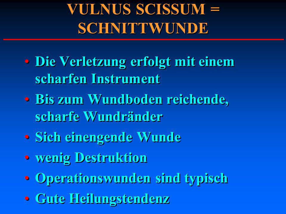 VULNUS SCISSUM = SCHNITTWUNDE