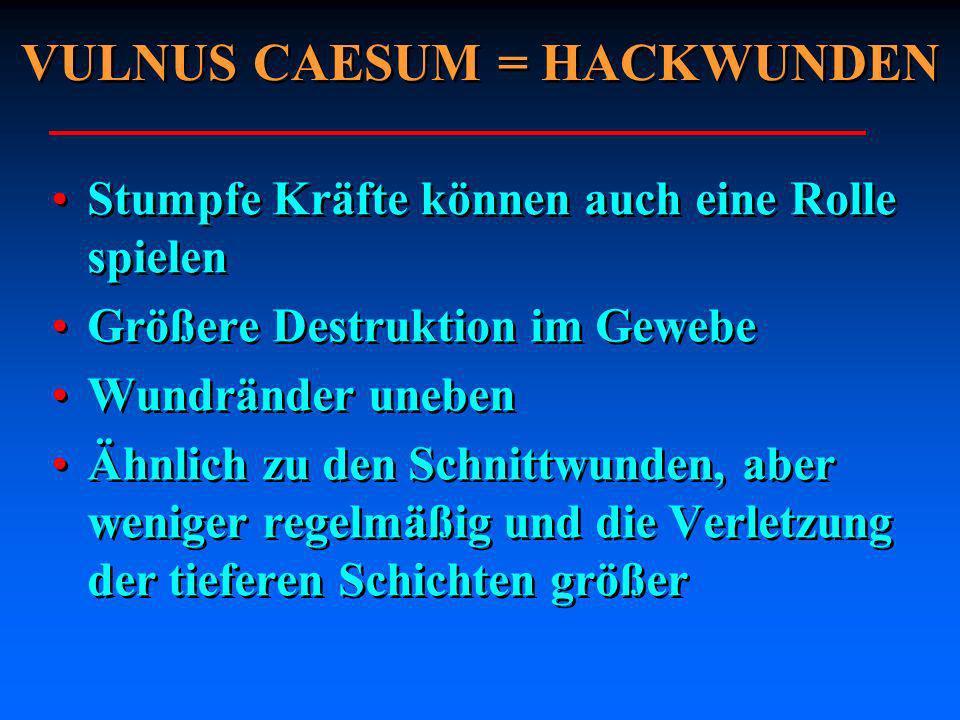 VULNUS CAESUM = HACKWUNDEN