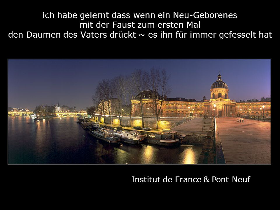 Institut de France & Pont Neuf