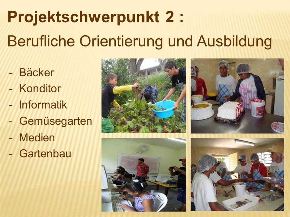 Projektschwerpunkt 2 : Berufliche Orientierung und Ausbildung