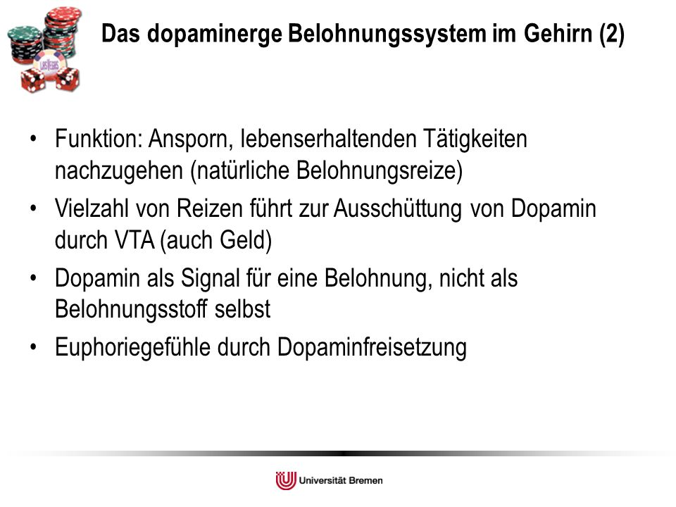 Das dopaminerge Belohnungssystem im Gehirn (2)