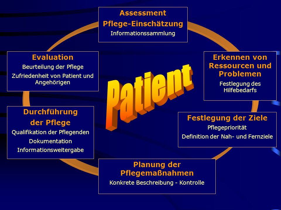 Erkennen von Ressourcen und Problemen Planung der Pflegemaßnahmen