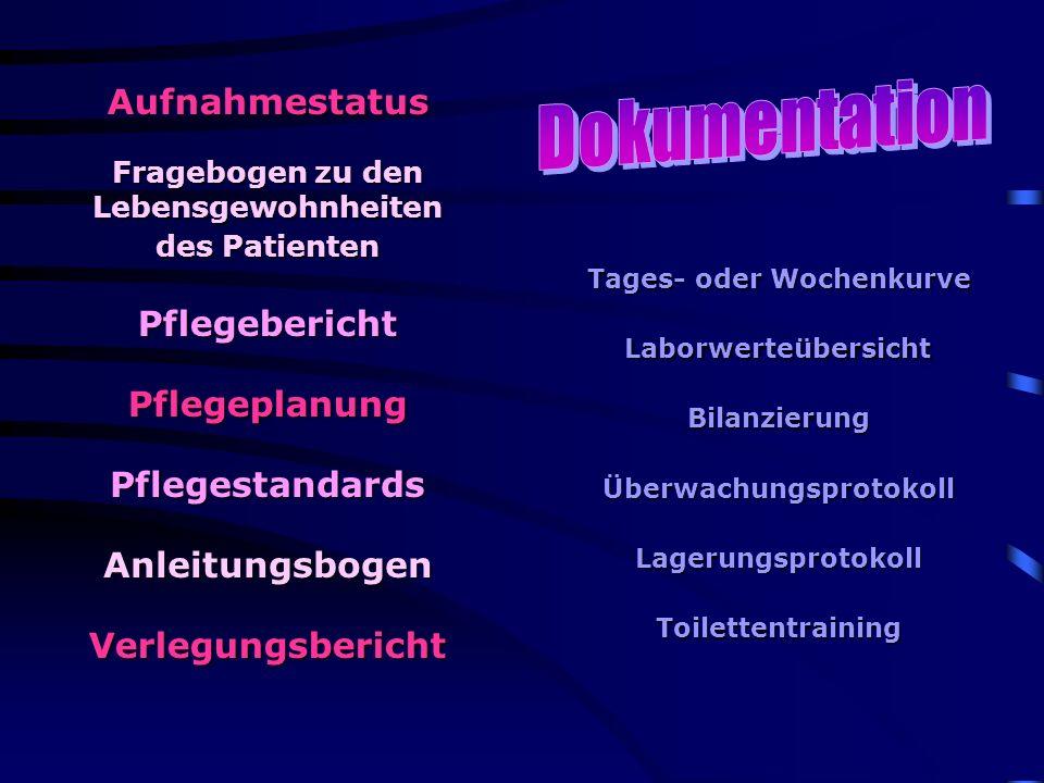 Dokumentation Aufnahmestatus Pflegebericht Pflegeplanung