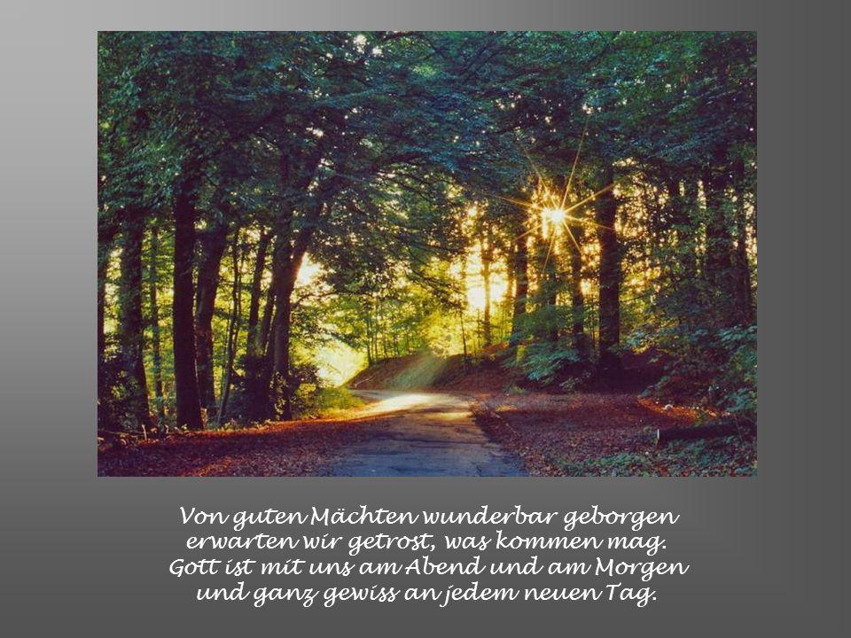 Von guten Mächten wunderbar geborgen erwarten wir getrost, was kommen mag.