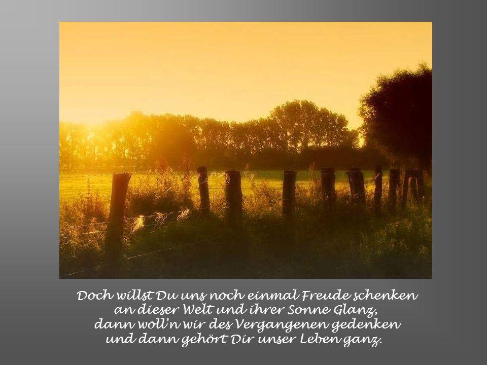 Doch willst Du uns noch einmal Freude schenken an dieser Welt und ihrer Sonne Glanz, dann woll n wir des Vergangenen gedenken und dann gehört Dir unser Leben ganz.