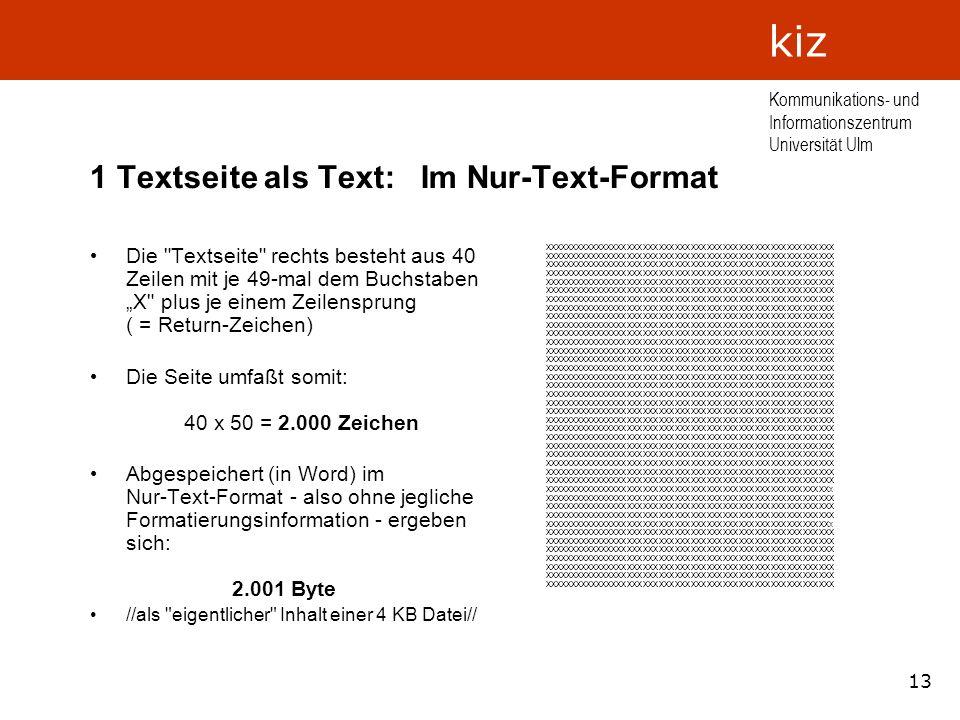 1 Textseite als Text: Im Nur-Text-Format