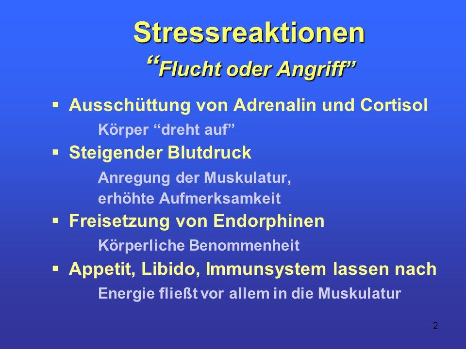 Stressreaktionen Flucht oder Angriff