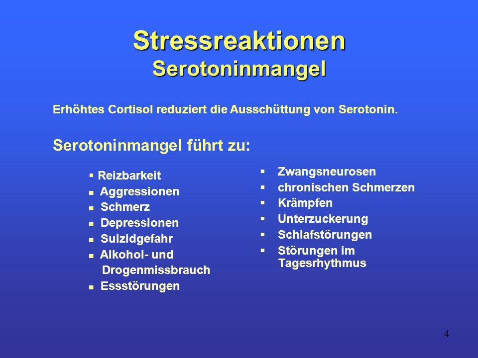 Stressreaktionen Serotoninmangel