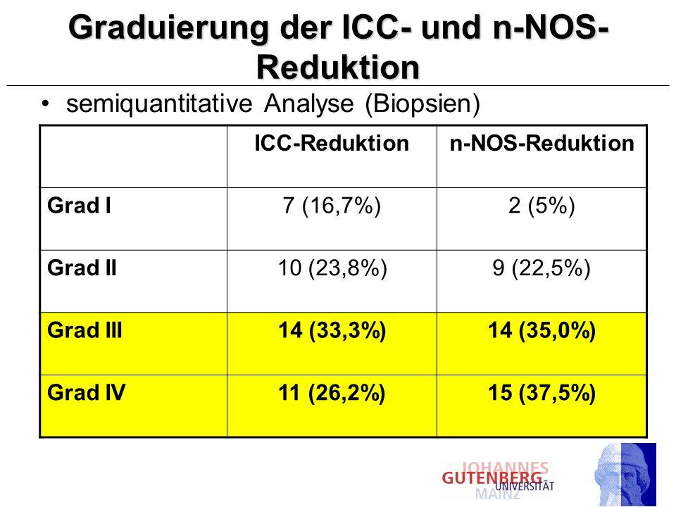 Graduierung der ICC- und n-NOS- Reduktion