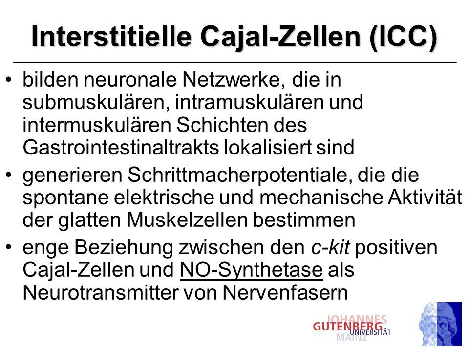 Interstitielle Cajal-Zellen (ICC)