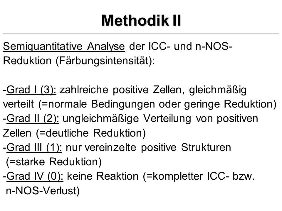 Methodik II Semiquantitative Analyse der ICC- und n-NOS-