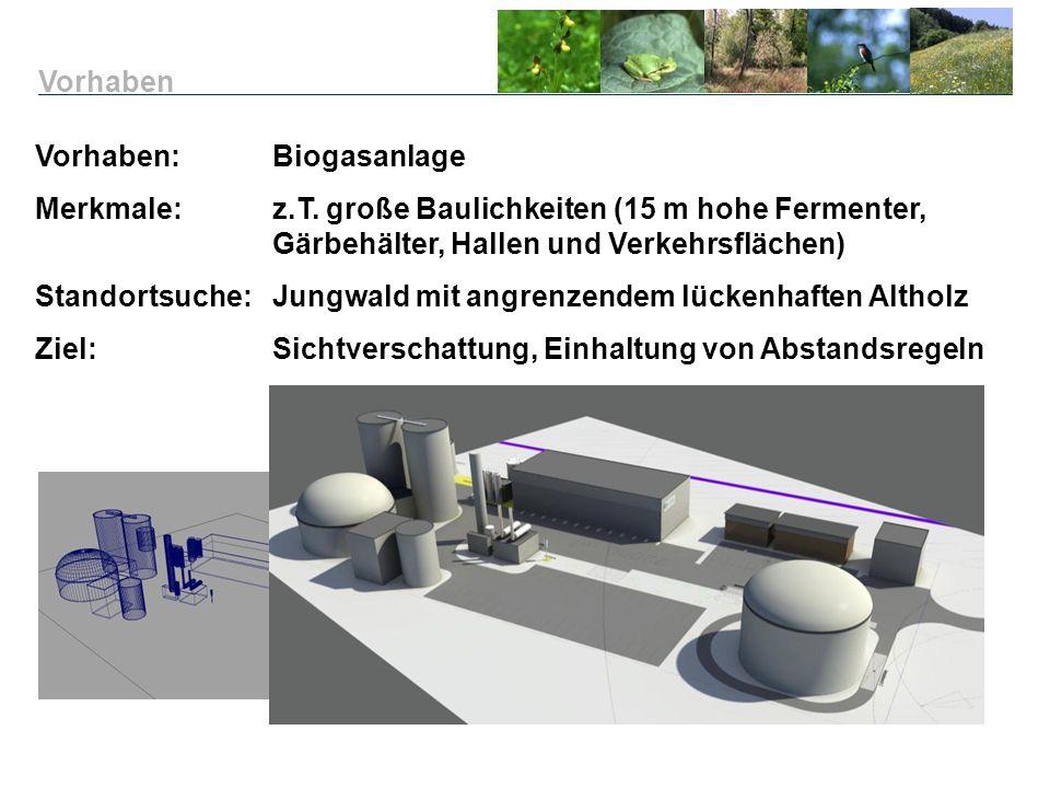Vorhaben Vorhaben: Biogasanlage. Merkmale: z.T. große Baulichkeiten (15 m hohe Fermenter, Gärbehälter, Hallen und Verkehrsflächen)