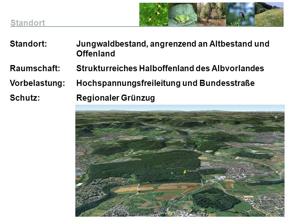 Standort Standort: Jungwaldbestand, angrenzend an Altbestand und Offenland. Raumschaft: Strukturreiches Halboffenland des Albvorlandes.