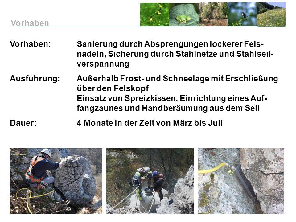 Vorhaben Vorhaben: Sanierung durch Absprengungen lockerer Fels- nadeln, Sicherung durch Stahlnetze und Stahlseil- verspannung.