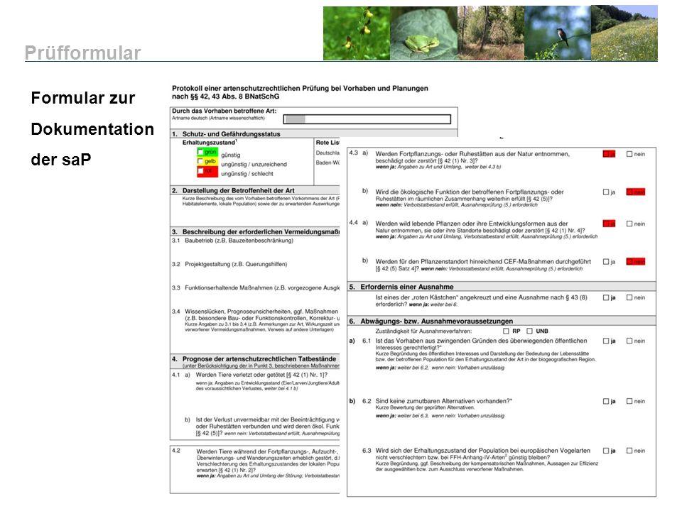 Prüfformular Formular zur Dokumentation der saP