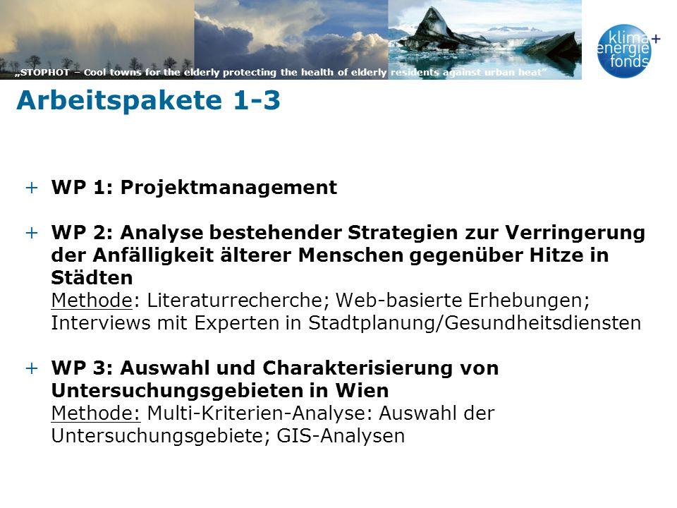 Arbeitspakete 1-3 WP 1: Projektmanagement