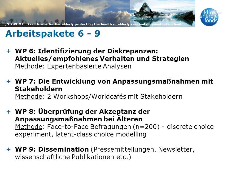 Arbeitspakete 6 - 9 WP 6: Identifizierung der Diskrepanzen: Aktuelles/empfohlenes Verhalten und Strategien.
