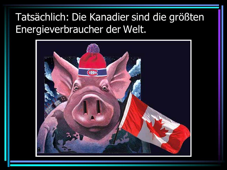 Tatsächlich: Die Kanadier sind die größten Energieverbraucher der Welt.