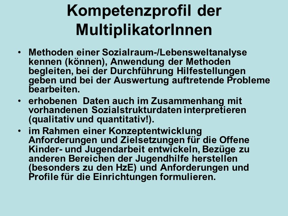 Kompetenzprofil der MultiplikatorInnen