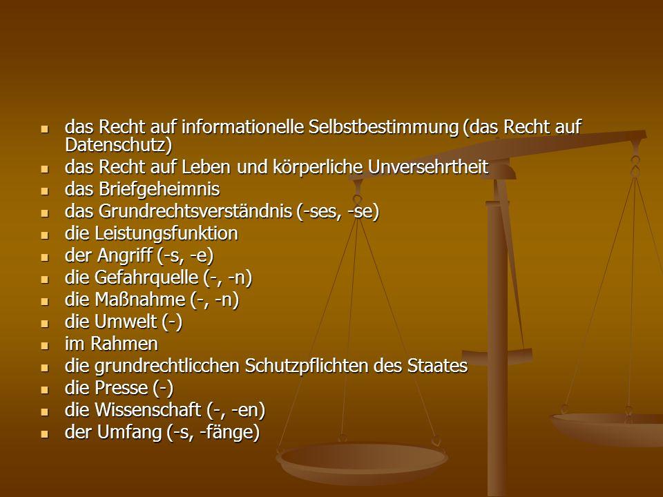 das Recht auf informationelle Selbstbestimmung (das Recht auf Datenschutz)