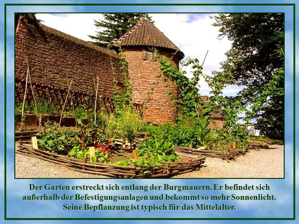 Der Garten erstreckt sich entlang der Burgmauern