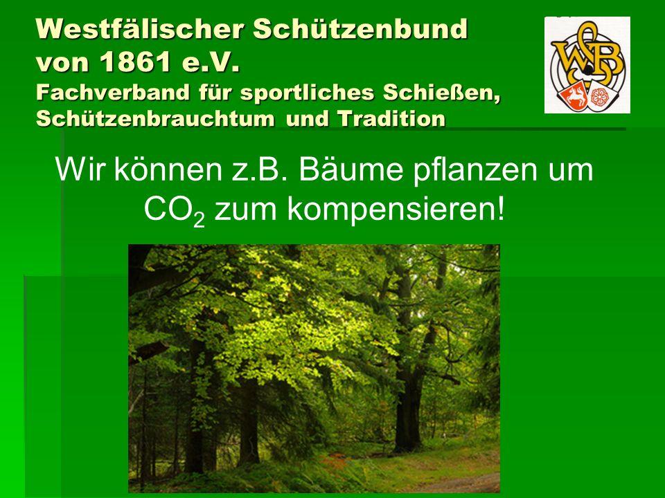 Wir können z.B. Bäume pflanzen um CO2 zum kompensieren!