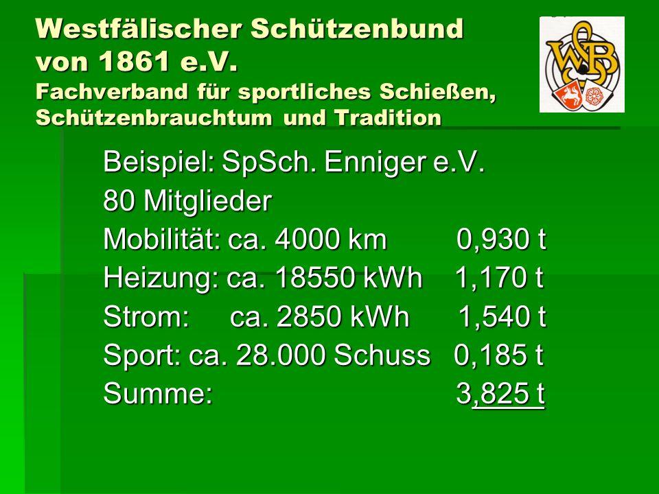 Beispiel: SpSch. Enniger e.V. 80 Mitglieder