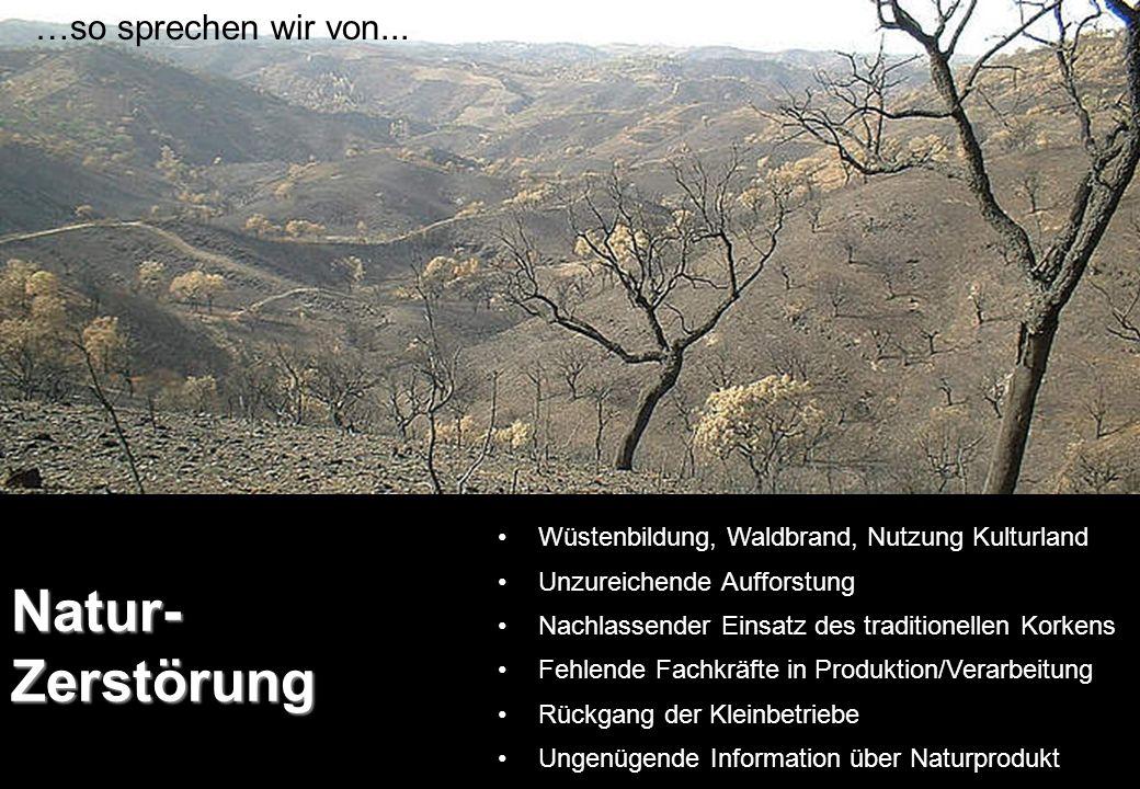 Natur-Zerstörung …so sprechen wir von...