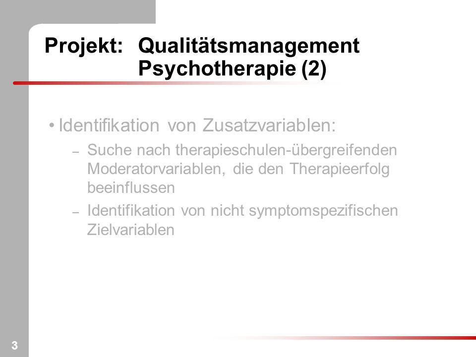 Projekt: Qualitätsmanagement Psychotherapie (2)