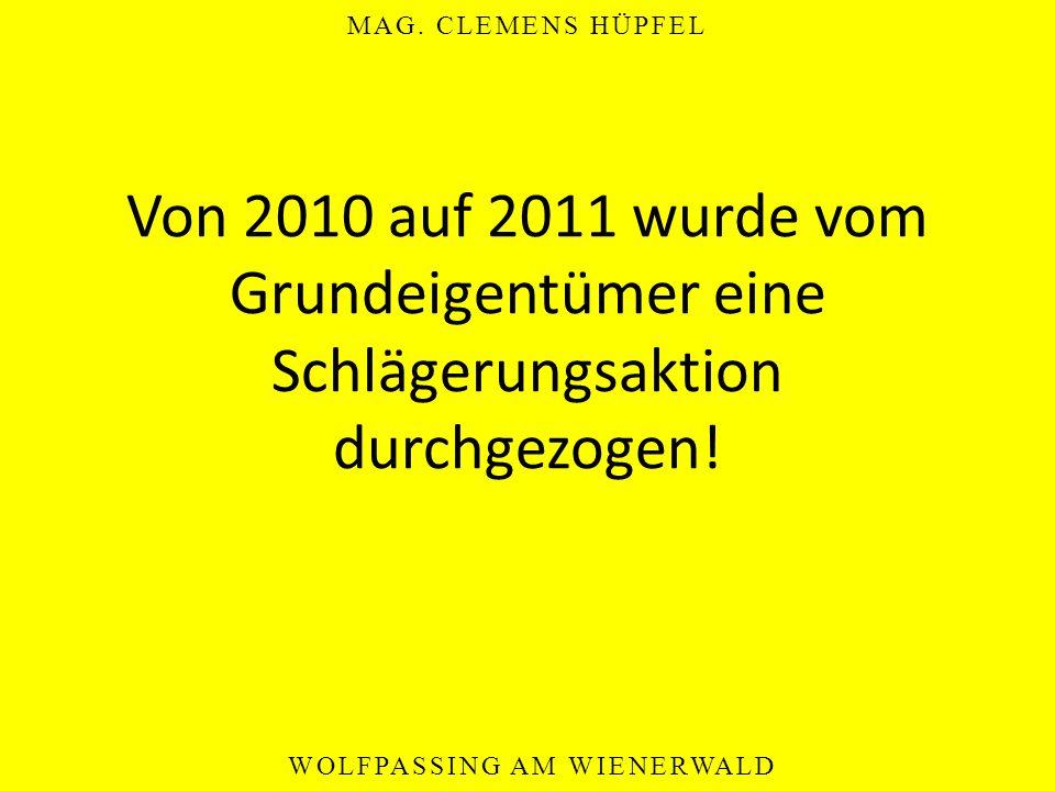 Von 2010 auf 2011 wurde vom Grundeigentümer eine Schlägerungsaktion durchgezogen!