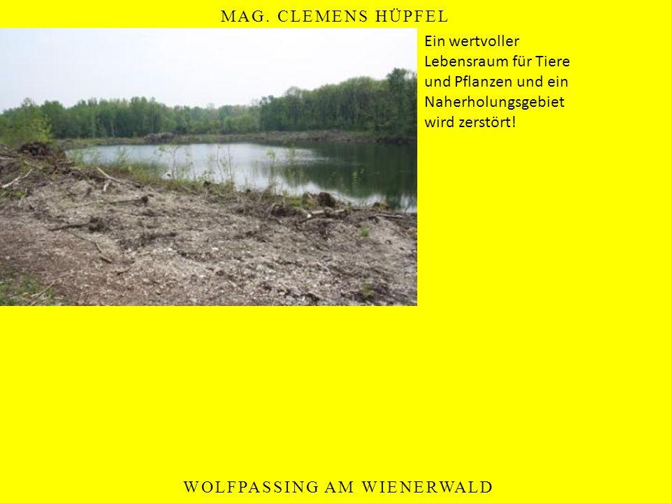 Ein wertvoller Lebensraum für Tiere und Pflanzen und ein Naherholungsgebiet wird zerstört!