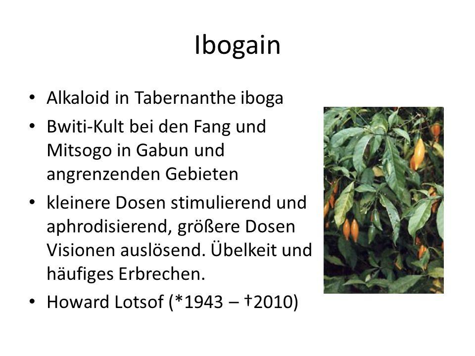 Ibogain Alkaloid in Tabernanthe iboga