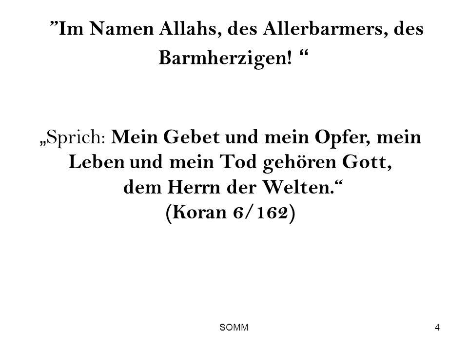 Im Namen Allahs, des Allerbarmers, des Barmherzigen!