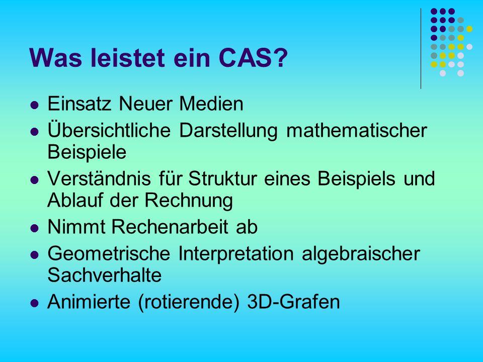 Was leistet ein CAS Einsatz Neuer Medien