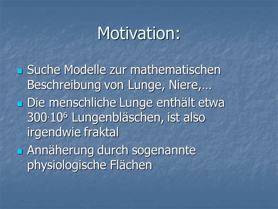 Motivation: Suche Modelle zur mathematischen Beschreibung von Lunge, Niere,…