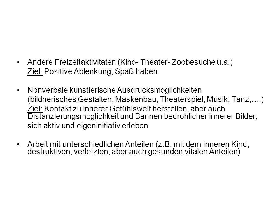 Andere Freizeitaktivitäten (Kino- Theater- Zoobesuche u.a.)