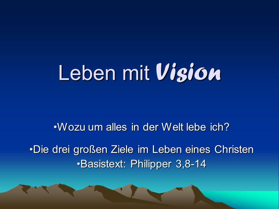 Leben mit Vision Wozu um alles in der Welt lebe ich