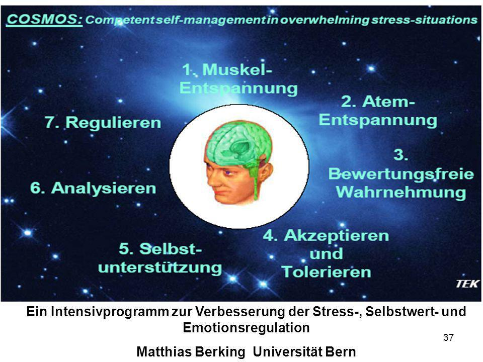 Matthias Berking Universität Bern