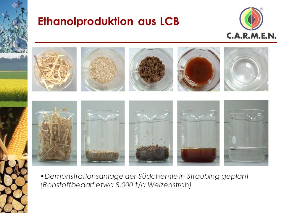 Ethanolproduktion aus LCB
