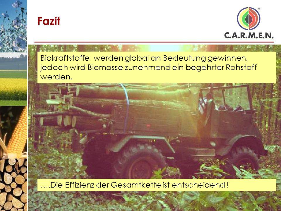 Fazit Biokraftstoffe werden global an Bedeutung gewinnen, jedoch wird Biomasse zunehmend ein begehrter Rohstoff werden.