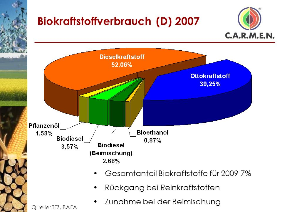 Biokraftstoffverbrauch (D) 2007