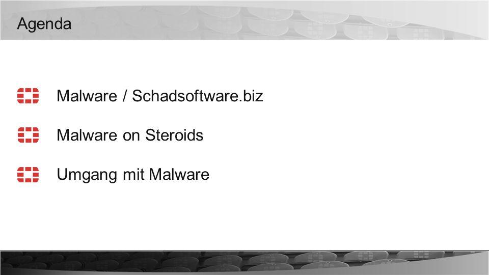 Agenda Malware / Schadsoftware.biz Malware on Steroids Umgang mit Malware