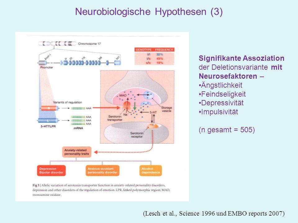 Neurobiologische Hypothesen (3)