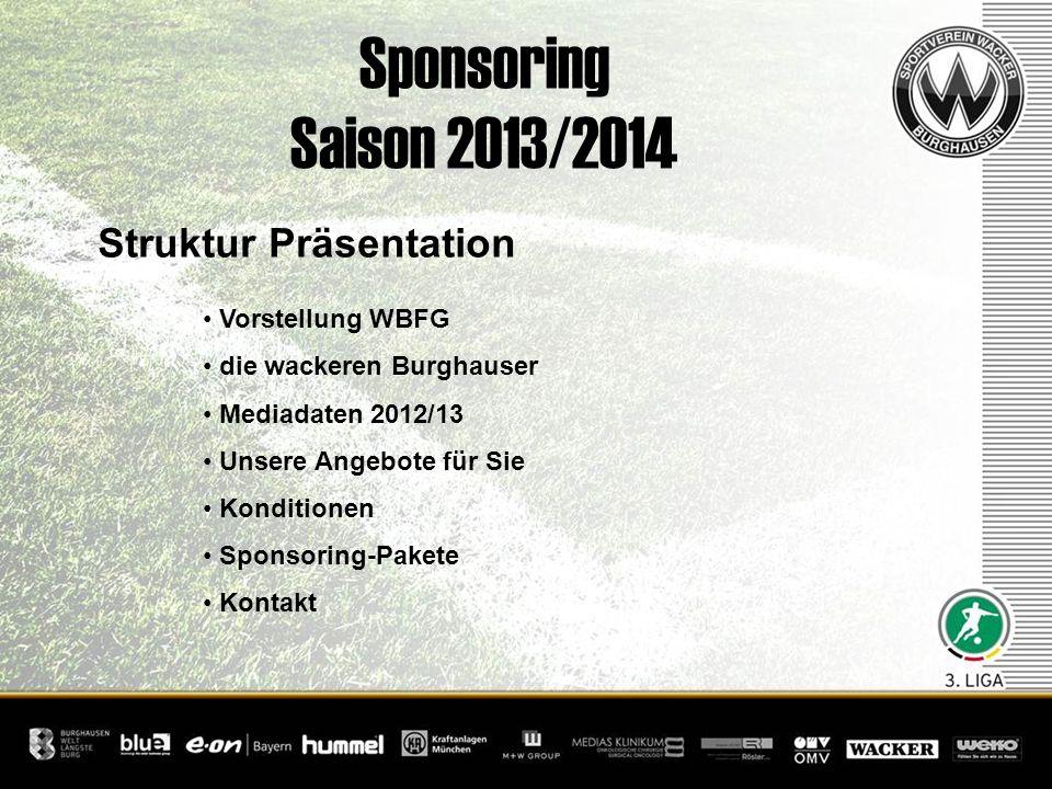 Sponsoring Saison 2013/2014 Struktur Präsentation Vorstellung WBFG