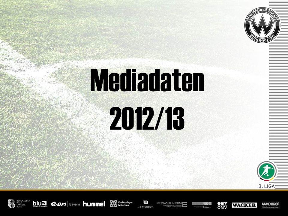 Mediadaten 2012/13