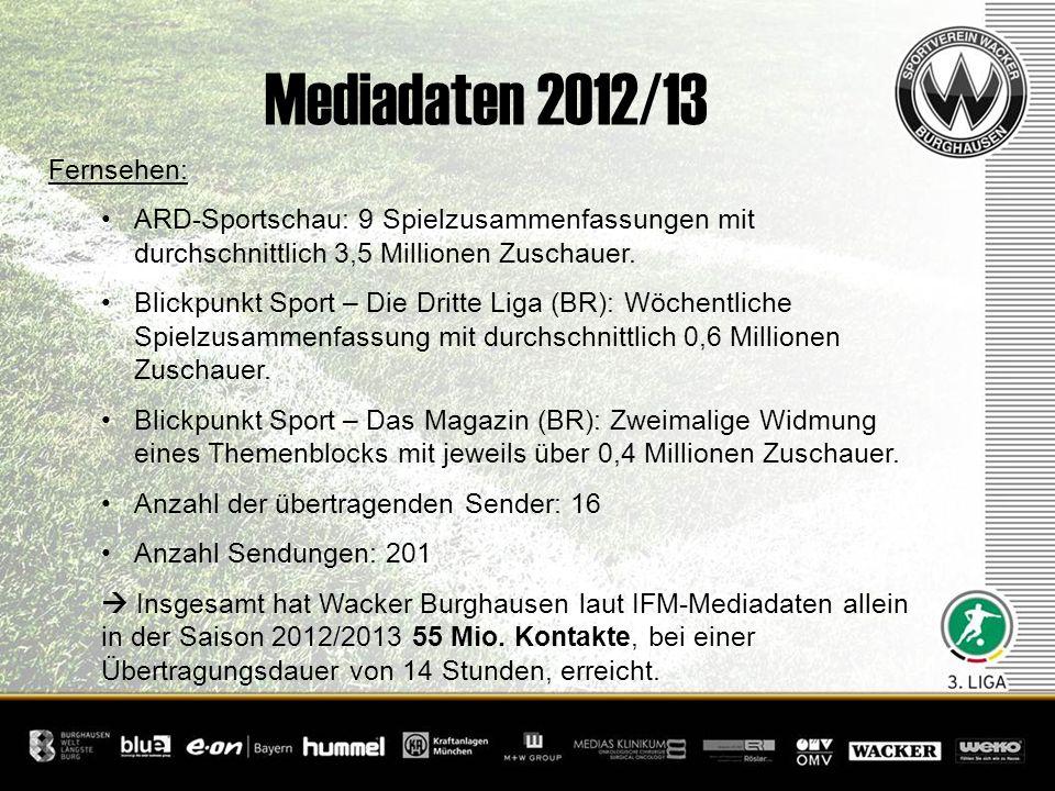 Mediadaten 2012/13 Fernsehen: