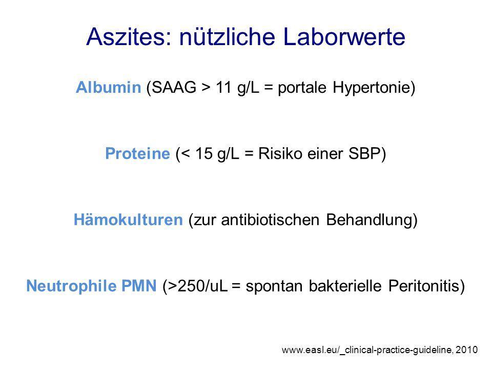 Aszites: nützliche Laborwerte